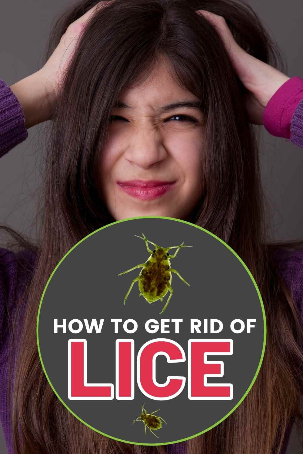 get rid of lice for good - lice remedies