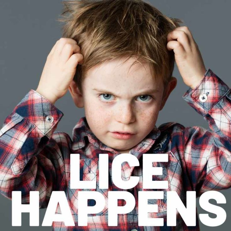 lice cure