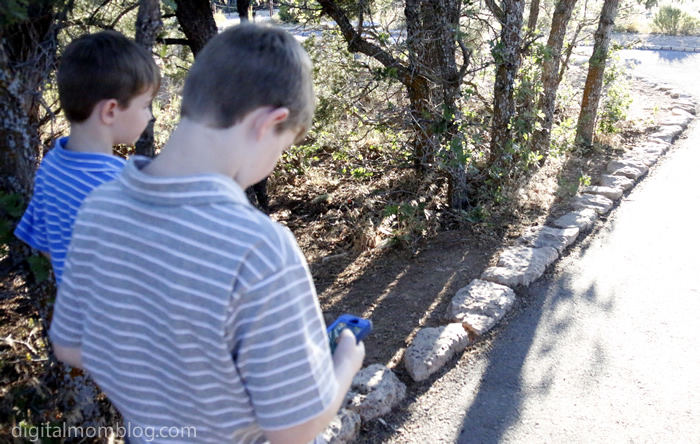 kids with smart phone playing pokemon go at a park