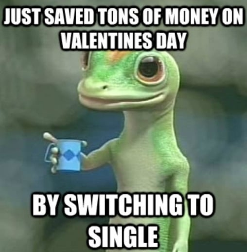 Just saved tons of money on valentines day by switching to single - geico insurance meme