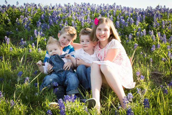 texas bluebonnet photos in texas