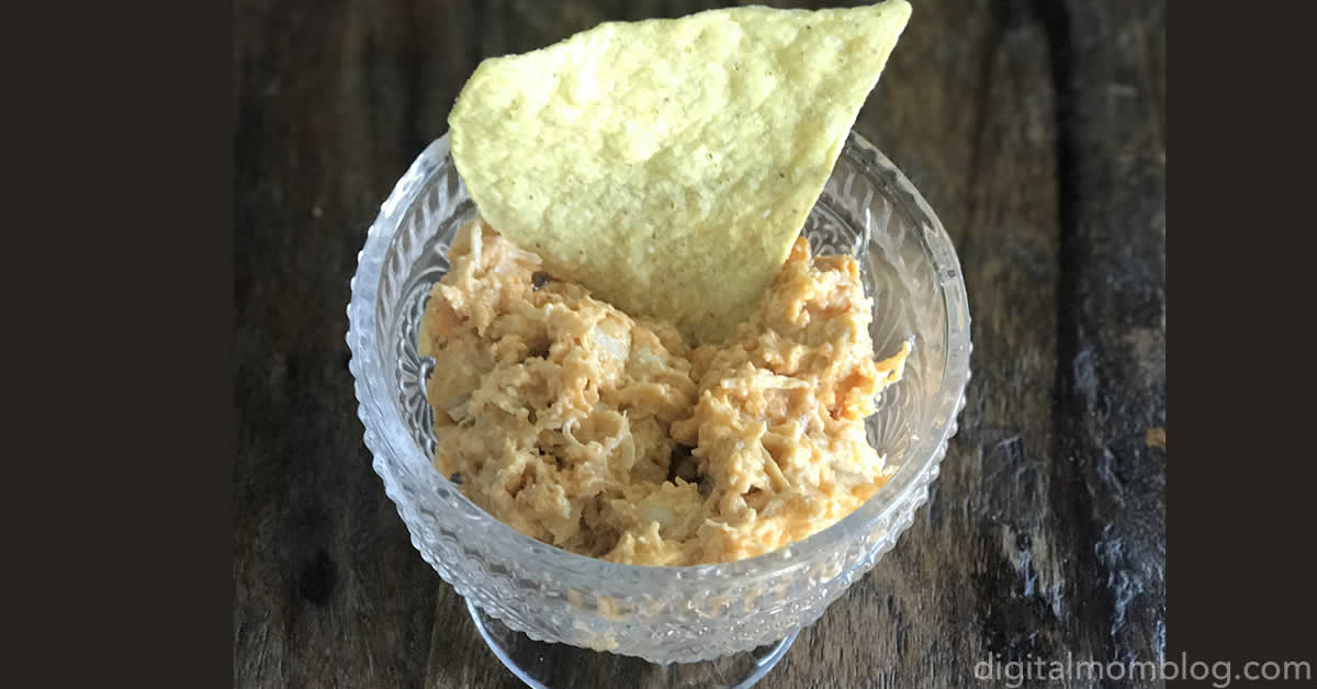 instant-pot-chicken-ranch-dip