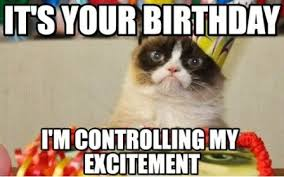 It's your birthday im controlling my excitement cat meme humor