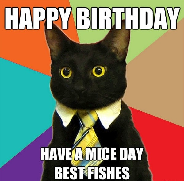 Happy birthday have a mice day best fishes - funny cat birthday meme