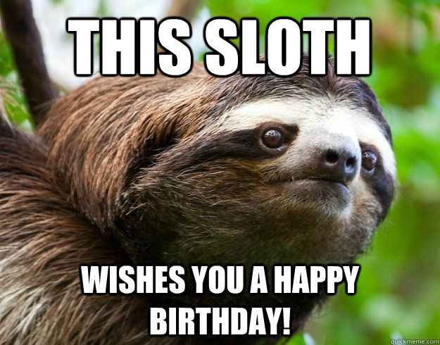 Sloth wishing you a Happy Birthday!