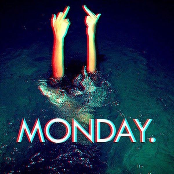 i hate monday meme - flipping off under water