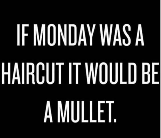 if monday was a haircut it would be a mullet - funny monday meme