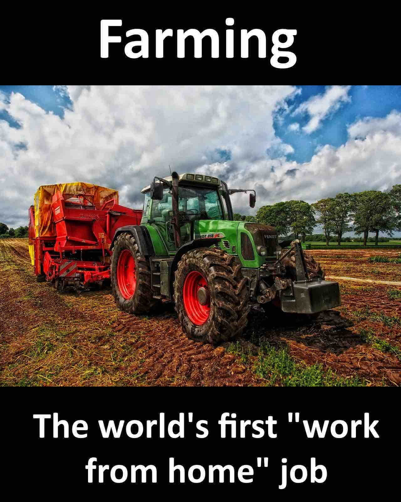 farming first wfh job