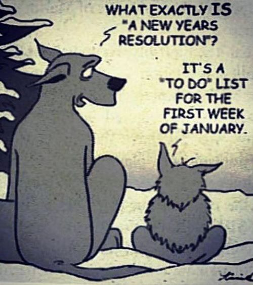 """What exactly is a """"New Year's resolution?"""" It's a """"TO-DO"""" list ofr the first week of January."""
