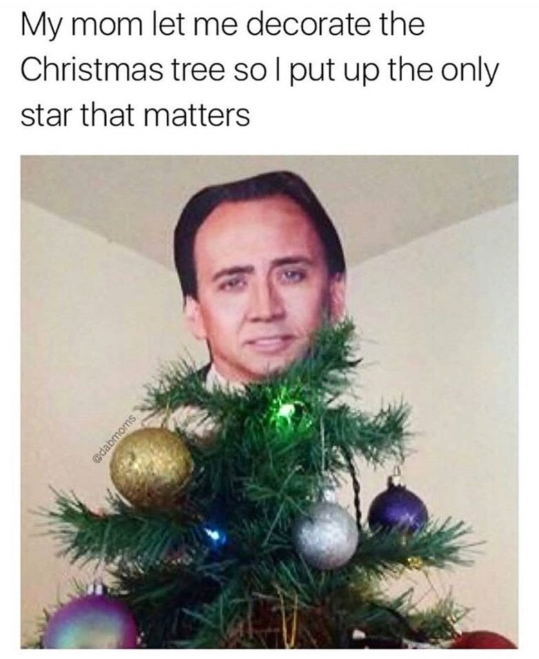 Christmas tree - my mom let me decorate the christmas tree so i put the only star that matters