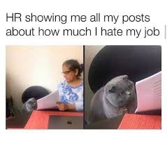 Hr showing me all my posts about how much i hate my job - funny work meme