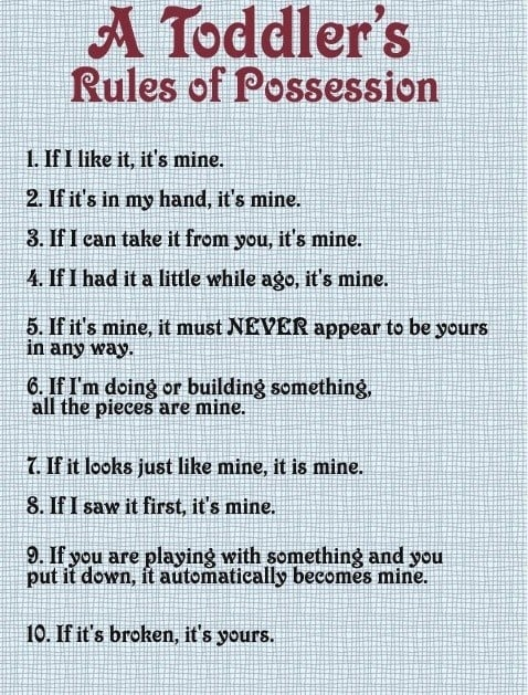 Toddlers Rule of Possession - Basically according to the toddler, it's never their fault and it's always theirs.