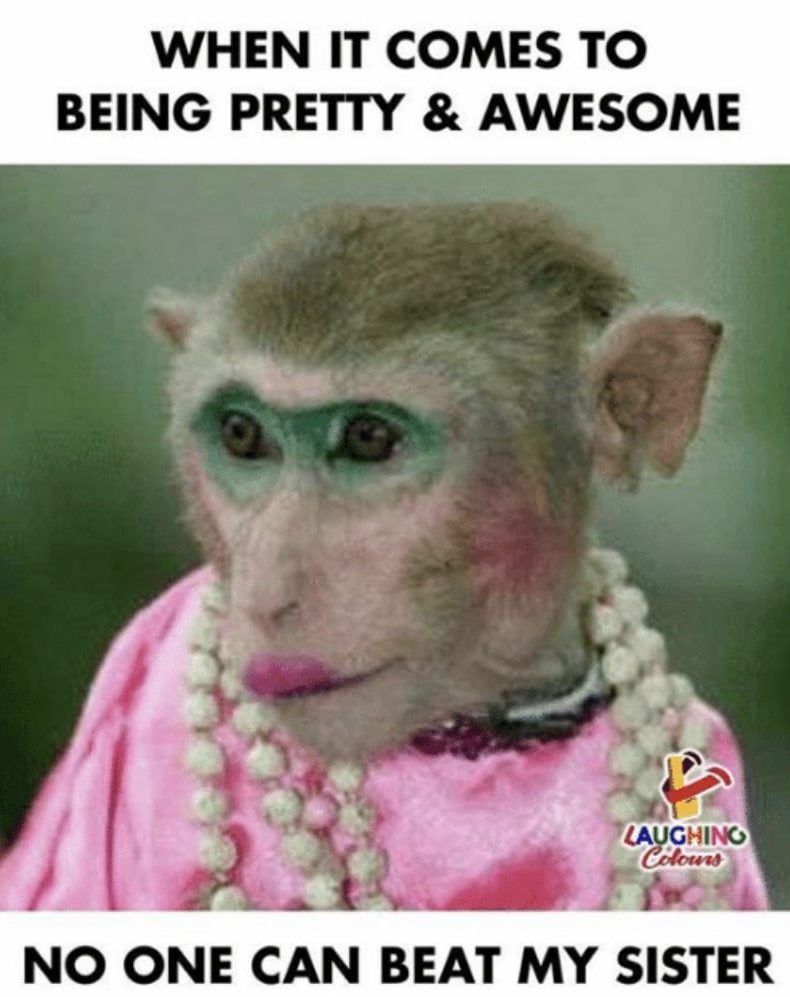When it comes to being pretty and awesome - no one can beat my sister meme