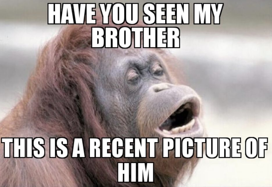 Ugly Brother Meme - a recent picture of my bro