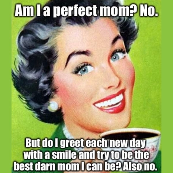 not the perfect mom meme