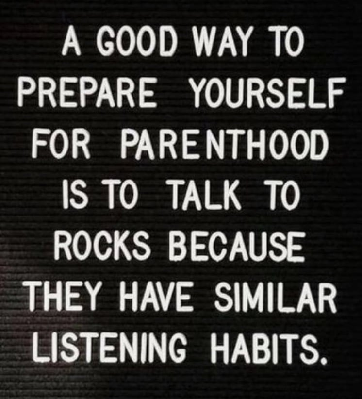 A good way to prepare yourself for parenthood is to talk to rocks because they have similar listening habits funny mom meme
