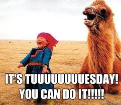 its tuesday you can do it