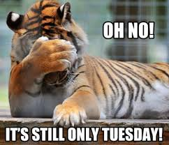 oh no only tuesday
