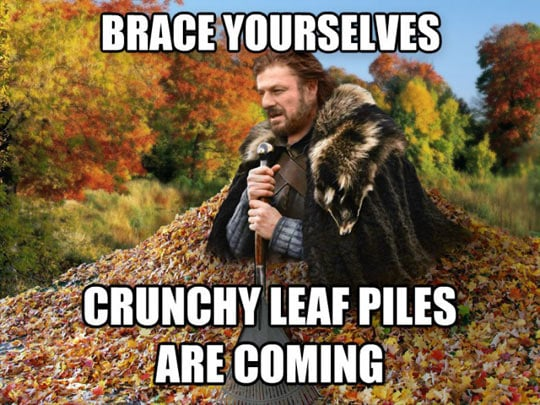 crunchy leaf piles are coming october - autumn memes