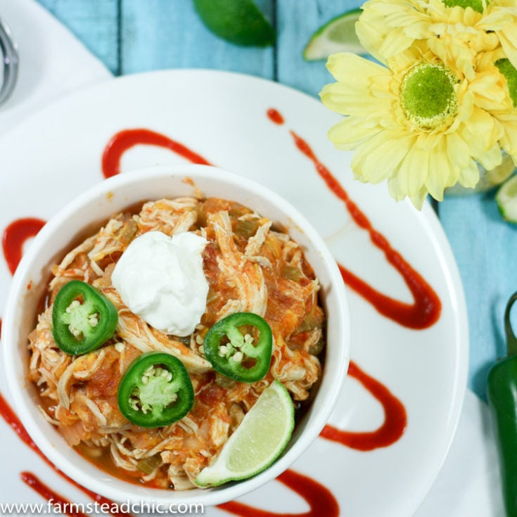 | Best Instant Pot Chili Recipes - Including Our Family Beef Chili IP Recipe!