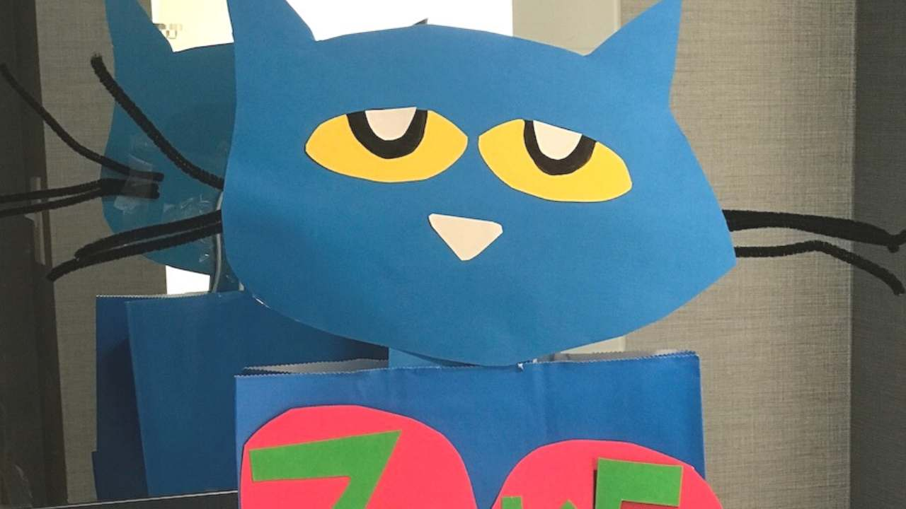 pete the cat vday box