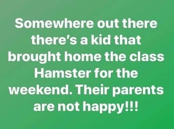 Somewhere out there is a kid who brought home the class pet homeschool meme