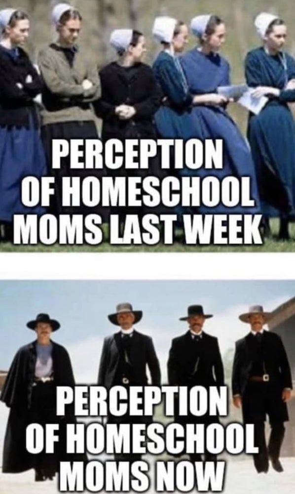 What homeschool moms are... memes about homeschooling kids