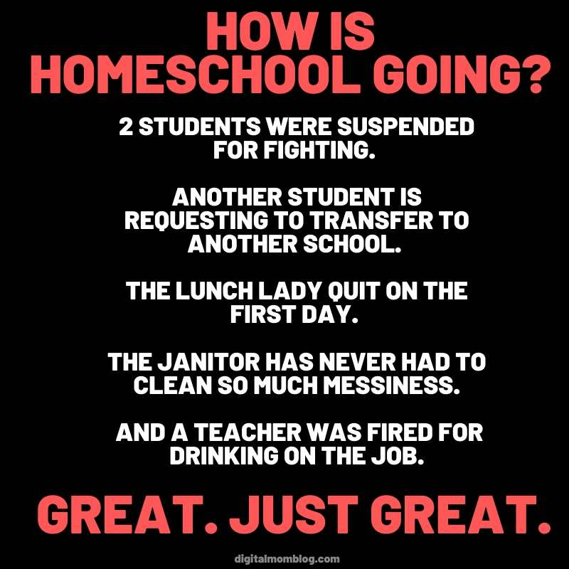 homeschool meme How is homeschool going - students suspended, teacher drinking, lunch lady quit