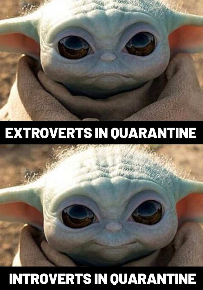 Introverts Check on your Extroverts they are not okay - Coronavirus Quarantine Meme