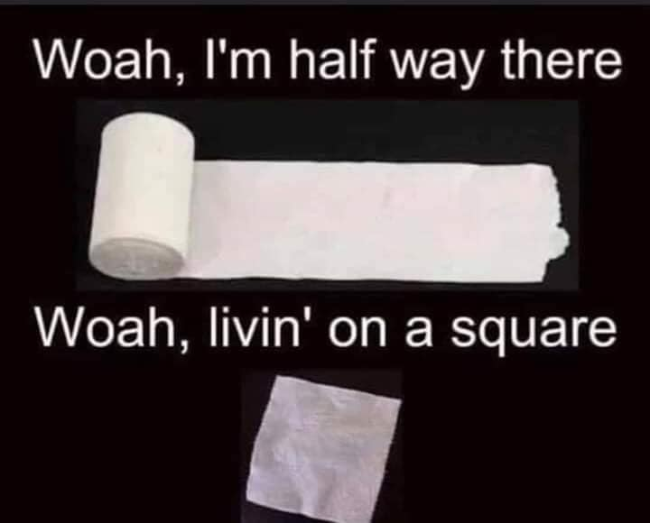 Living on a Square Toilet Paper Meme