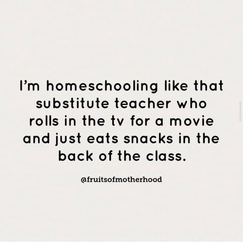 I'm homeschooling like that substitute teacher who rolls in the tv for a movie and just eats snacks in back of the class.  Homeschool Meme