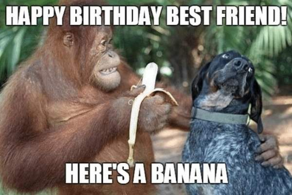 best friend birthday meme