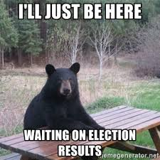 Waiting on election results bears be like