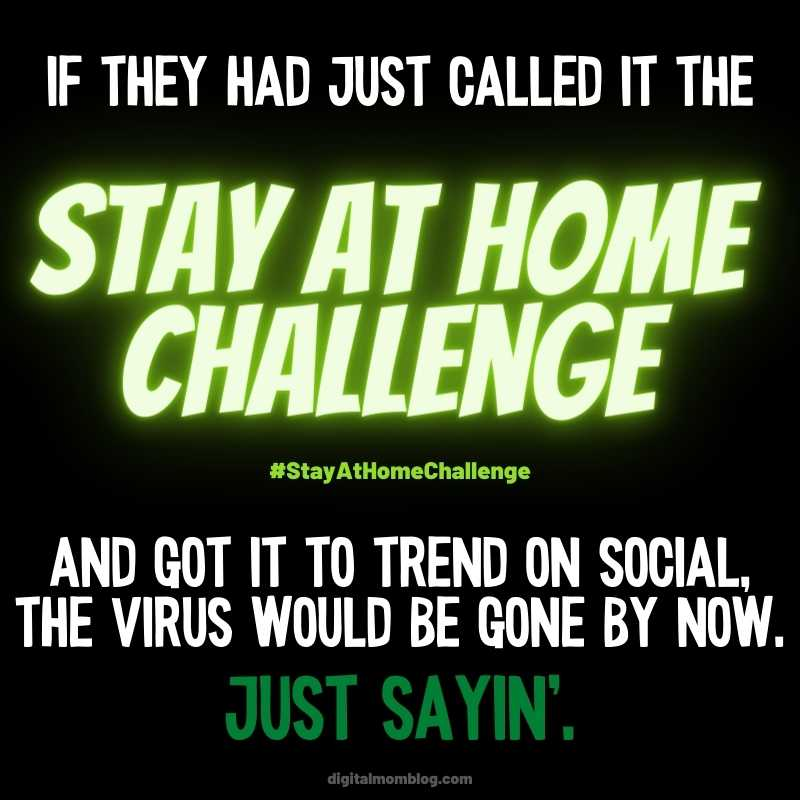 Stay at Home Challenge 2020 Meme