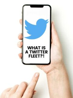 what-are-twitter-fleets