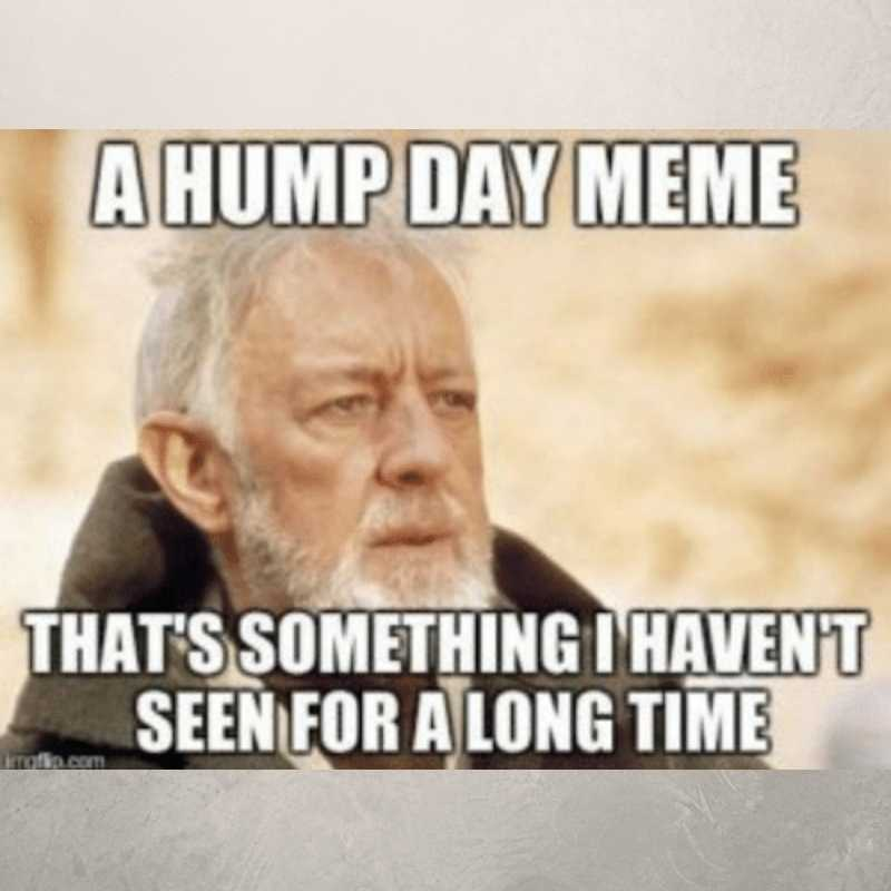 another hump day meme
