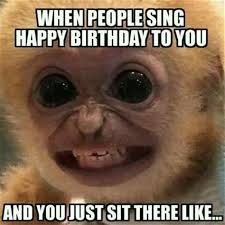 monkey birthday meme