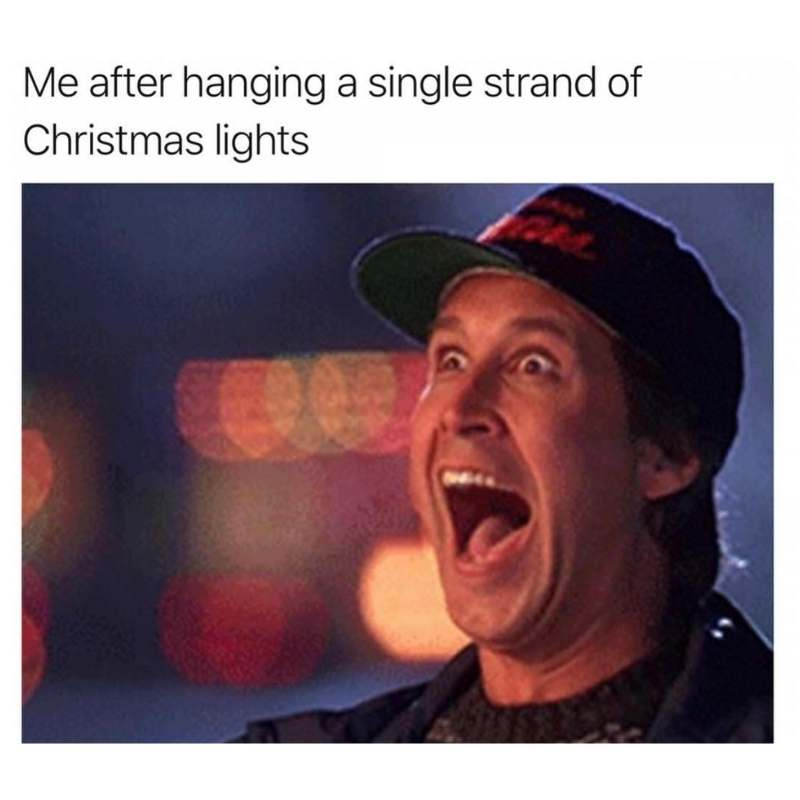 | 20+ Hilarious Christmas Vacation Memes for the Griswold Obsessed