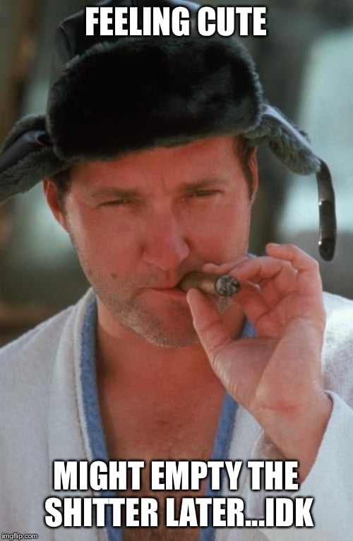 Feeling cute might empty the shitter later idk - cousin eddie christmas vacation meme