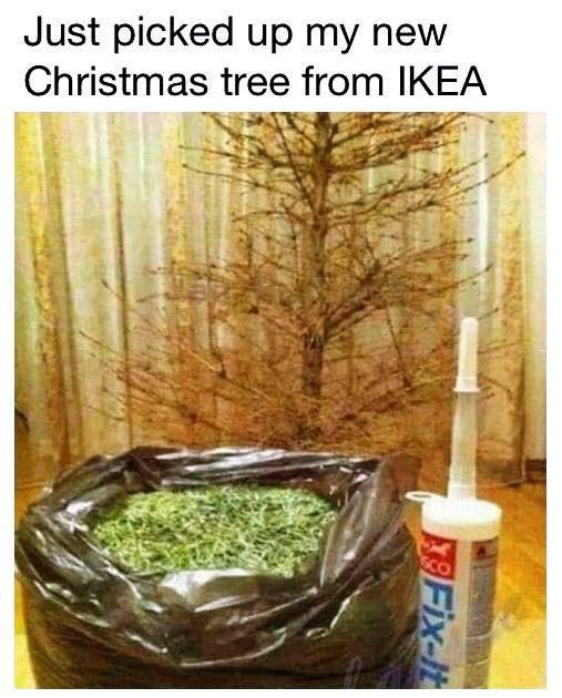 Just picked up my new Christmas tree from ikea - yeah a diy ikea christmas tree - not this year, 2020 - funny christmas meme