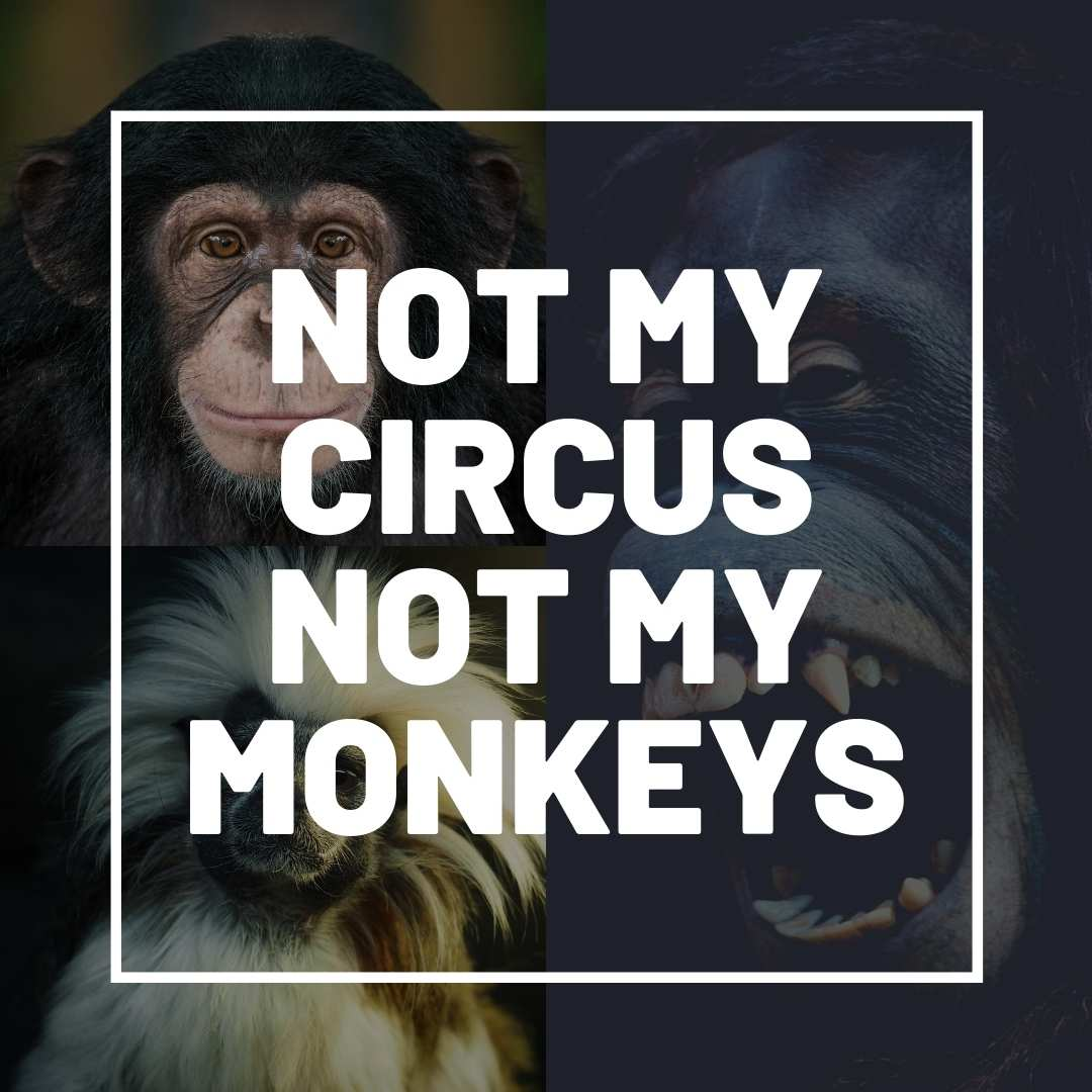 not my circus not my monkeys meme