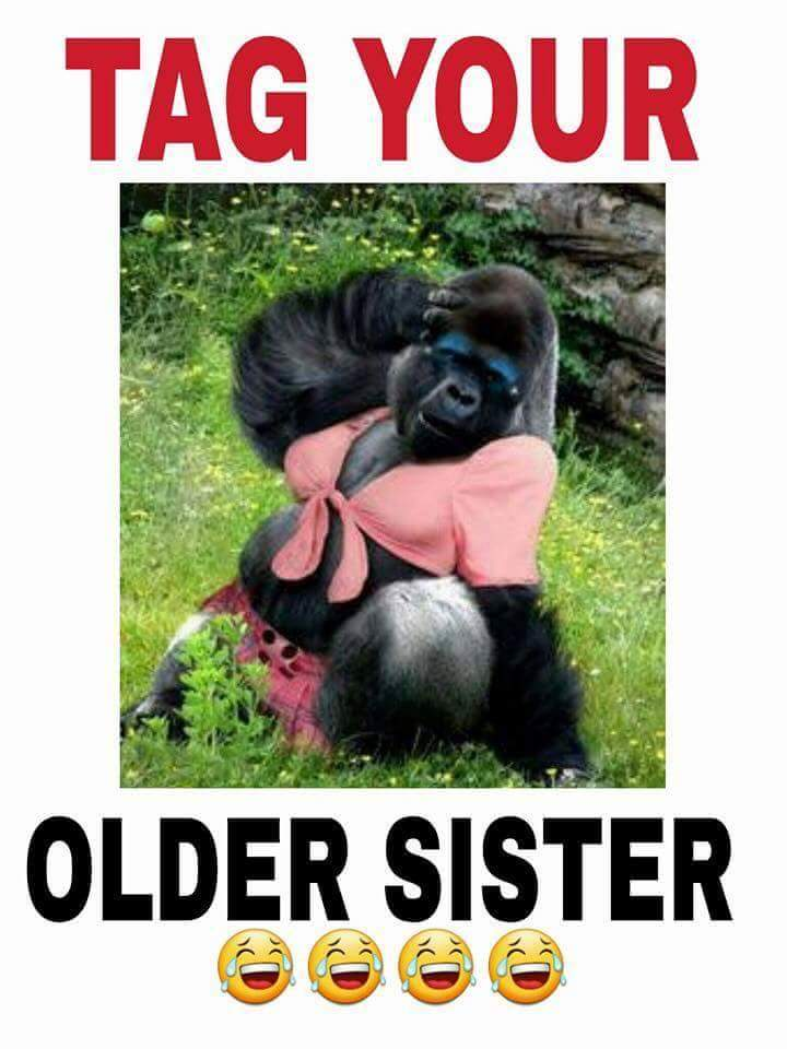 tag your older sister meme about monkeys