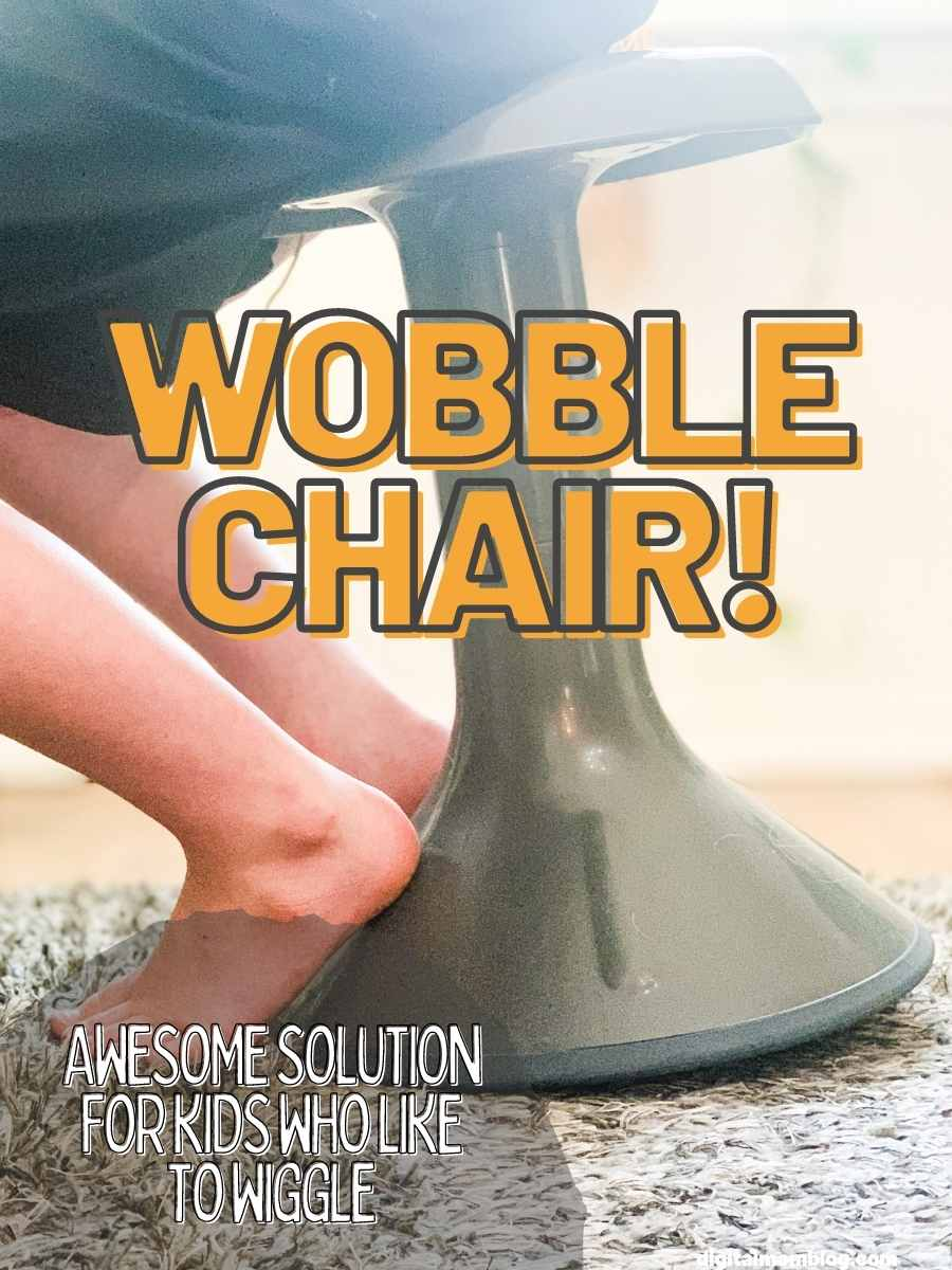 Everything Wobble Chair