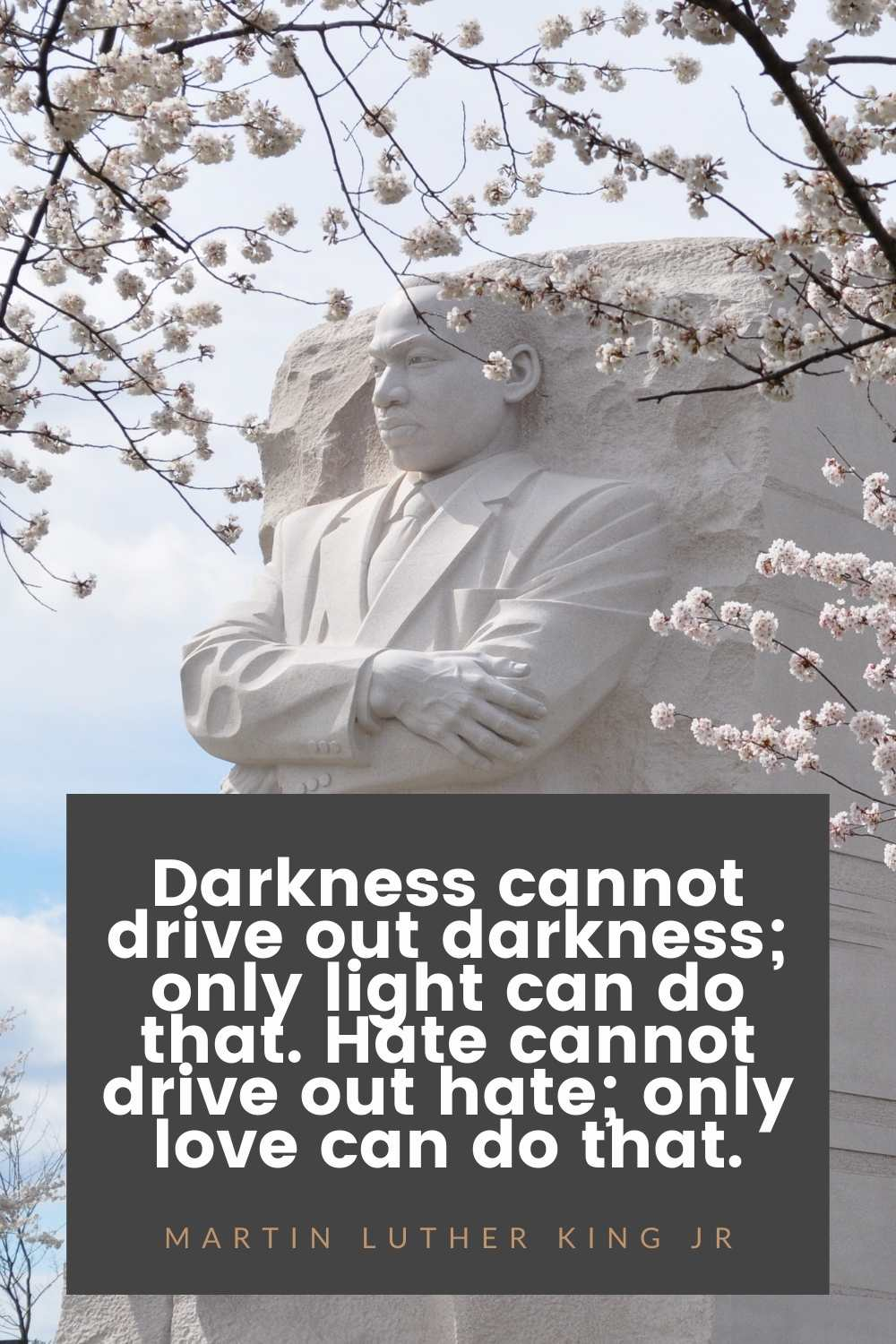 Darkness cannot drive out darkness; only light can do that. Hate cannot drive out hate; only love can do that. martin luther king jr quote