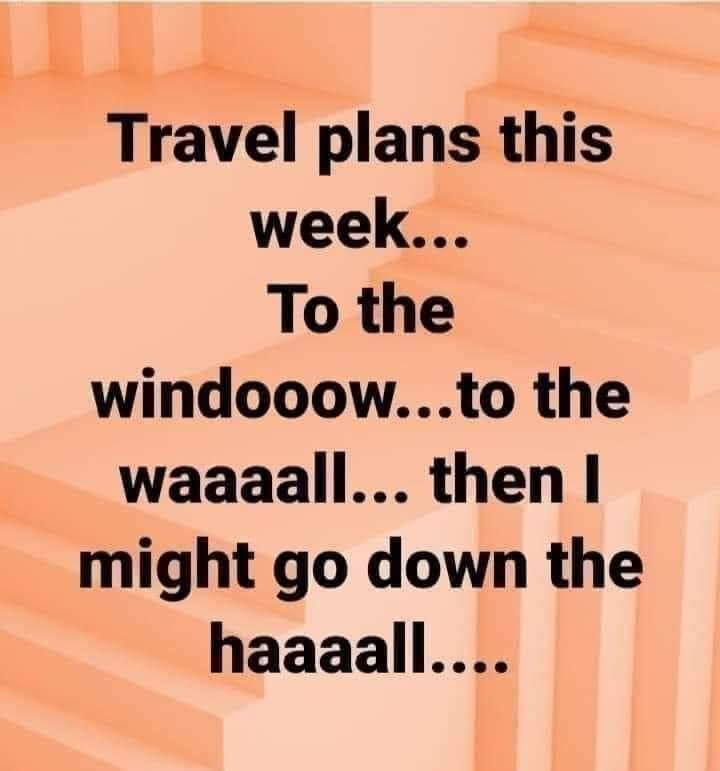 travel plans this week be like to the window to the wall and then down the hall – funny winter meme