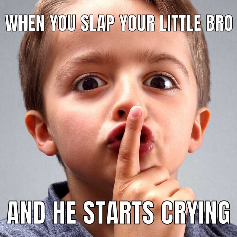 when you slap your little bro and he starts crying brother meme