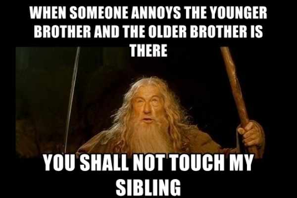 when someone annoys the younger brother meme