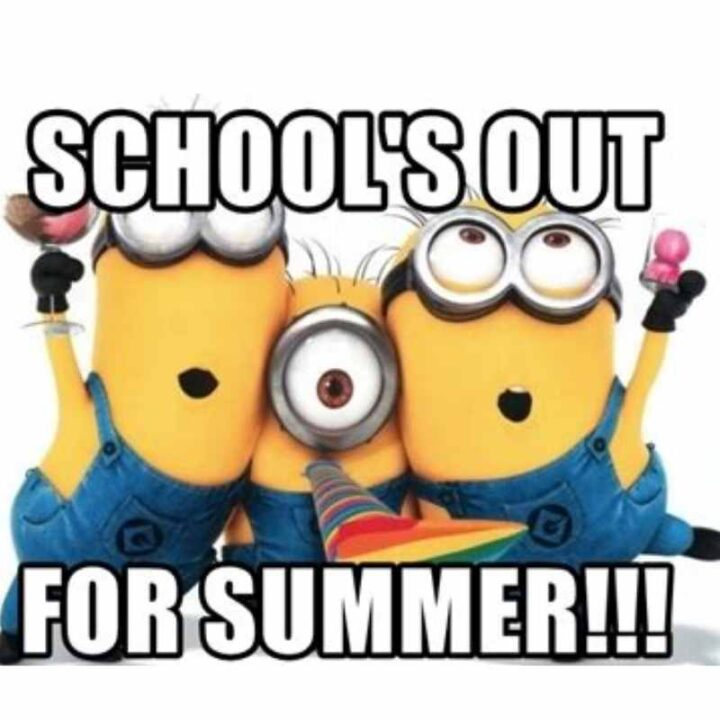 schools out for summer minion meme