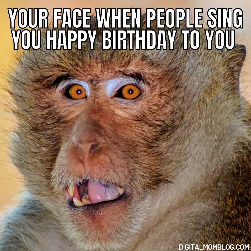 funny birthday meme - your face when someone sings happy birthday to you