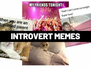 introvert memes funny